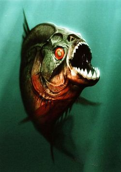 The real star of the film glares at you with a fishy eye.